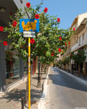 Road sign and hibiscus in the old town of Chania