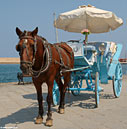 Horse-drawn carriage, Chania harbour