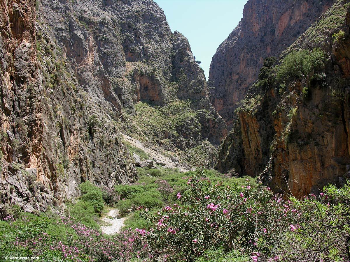 In the gorge of Aradena
