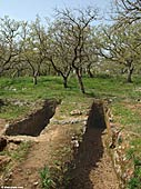 Late Minoan necropolis of Armeni