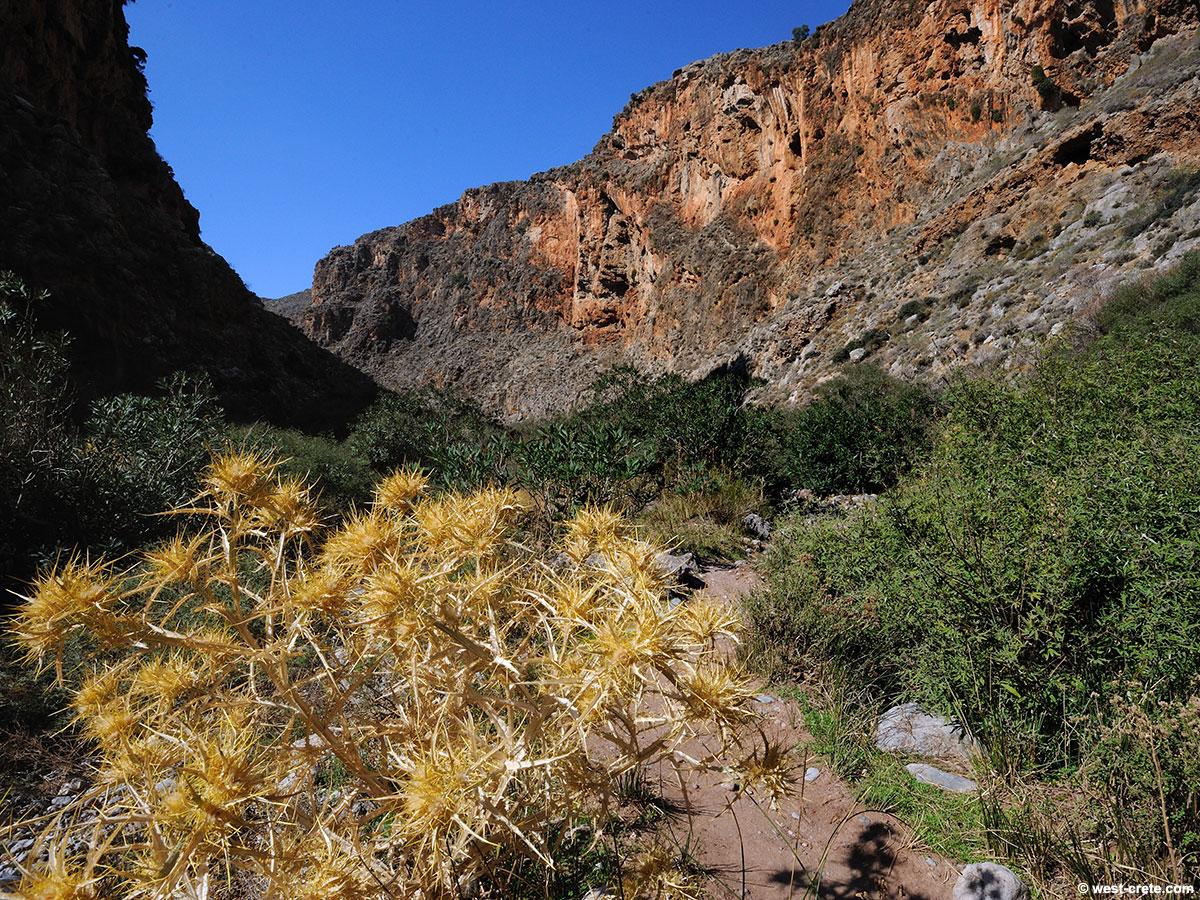 Gorge of the dead near Kato Zakros