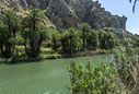 The palm forest of Preveli