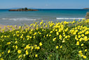 Spring time by Kalathas beach