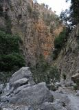 In the gorge of Agia Irini