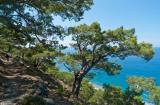 On the path between Agia Roumeli and Agios Pavlos""