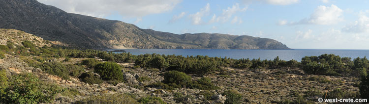 Panoramic view of the forest of Kedrodasos - click to enlarge