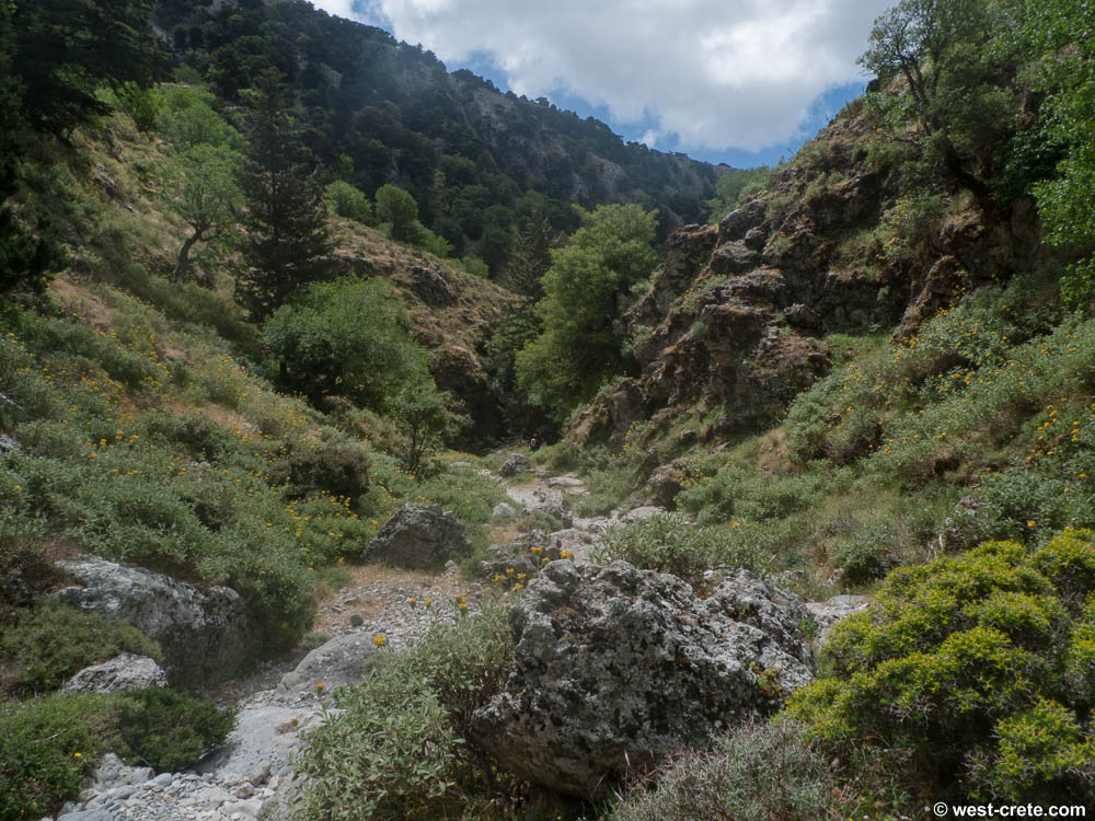 The gorge of Imbros, Crete
